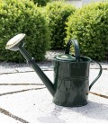 Watering can 5 l, green