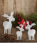 Decoration Set ELK, Stainless Steel